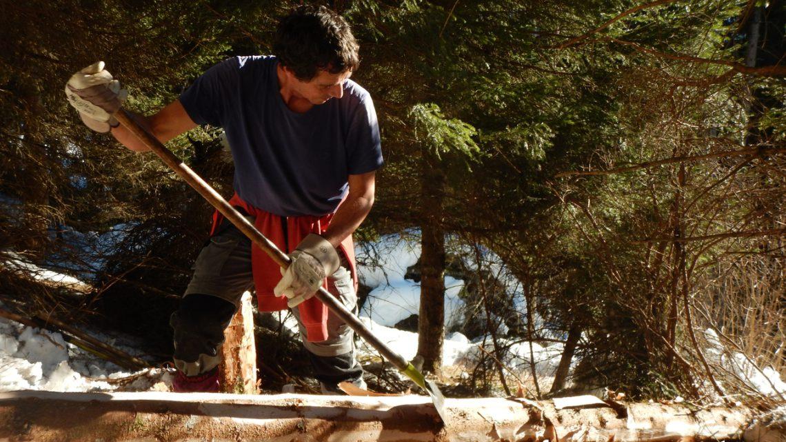 Bergwaldprojekt in Action